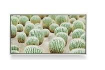 schilderij cactus