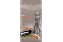 kenner select kittenvoeding