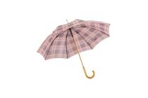 paraplu ruit