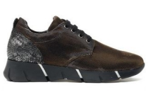 ann rocks sneaker bruin