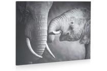 schilderij elephant and baby