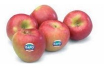 hollandse kanzi appels