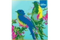 kleenex collections birds