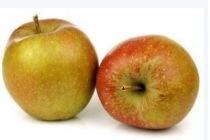 goudreinet appelen