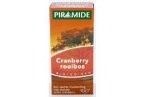 piramide rooibos cranberry