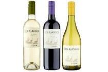 vina maipo chileense wijn