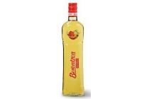 berentzen apfelkorn fles 70 cl en euro 6 95