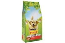 bonzo adult active vlees