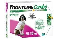 frontline combo spot on 20 40 kg