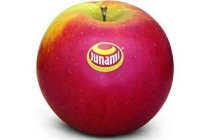 hollandse junami appels