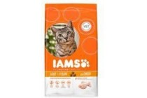 iams cat adult kip