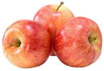 dirk royal gala appelen