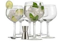 cocktailparty gin en tonic
