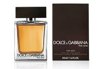 dolce en gabbana the one for men