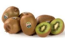 zespri kiwi green