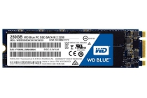 western digital blue m 2 500 gb