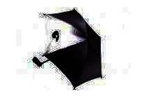 babsana parasol