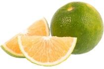 satsuma mandarijnen