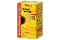bloem echinacea capsules