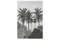 fotobehang palmen dessin 89434