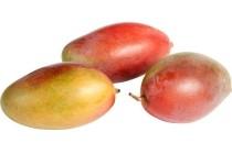 amelie mango