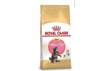 royal canin fbn kitten maine coon