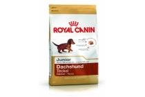 royal canin bhn dachshund junior