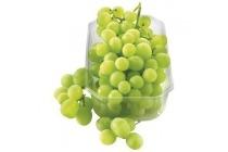 pitloze witte druiven