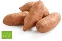biologische zoete aardappelen
