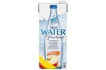 dubbelfrisss water met fruitsap mango appel
