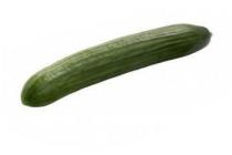 hoogvliet komkommer