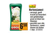 floraself hortensiamest