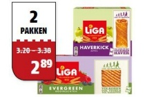 liga evergreen of haverkick