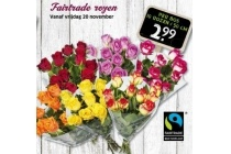 fairtrade rozen