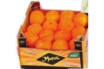 mandarijnen 1 8 kg