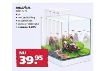 nexus 25 aquarium