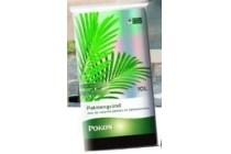 palmengrond