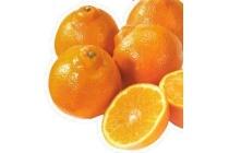 mineola mandarijnen