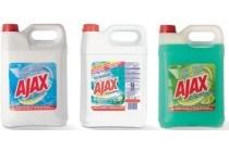 ajax allesreiniger can 5 liter en euro 6 25
