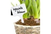 naambordjes voor planten