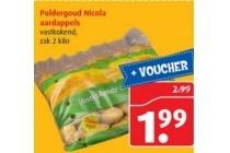 poldergoud nicola aardappels