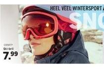 crivit ski bril