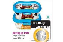 hertog ijs mini