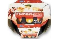 emmi fondue all in one