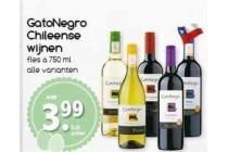 gatonegro chileense wijnen