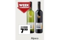 alpaca wijn
