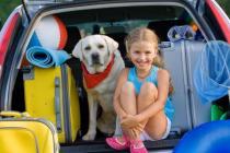 promotiecode vacances direct camping