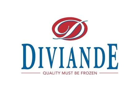 Diviande logo
