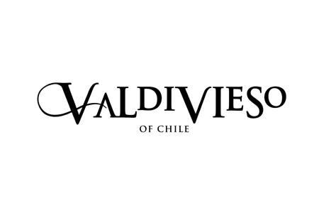 Valdivieso logo