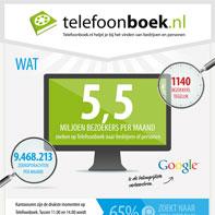 infographic-mobiele-zoekopdrachten-naar-bedrijven-groeien-met-175-procent